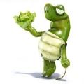 Mickael Turtle