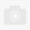 Sax in Madness